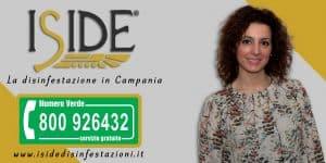 Bunner-ISIDE-2018-1-300x150 Iside la disinfestazione in campania