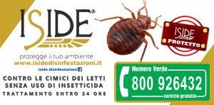 ISIDE-CIMICE-JPG-300x147 ISIDE CIMICE JPG