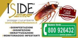 Disinfezione-Iside-Napoli-011-460-300x146 numero verde iside disinfestazioni
