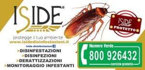 Disinfezione-Iside-Napoli-011-920-300x146 Disinfezione-Iside-Napoli-011-920