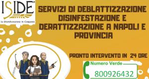 DISINFESTAZIONE NAPOLI PRONTO INTERVENTO 24H